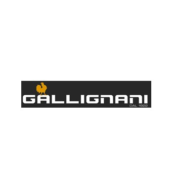 Gallignani S.p.a
